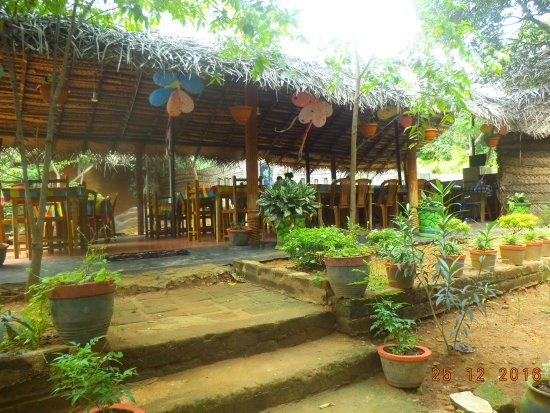 Giritale, Sri Lanka: View
