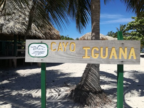 Cayo Iguana لوحة