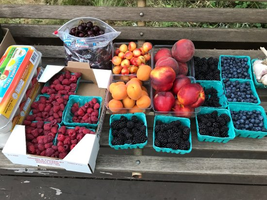 Puyallup, WA: Amazing produce from Scholz farm - berries and stone fruit galore!