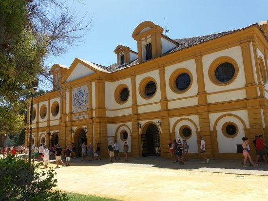 Херес де Ла Фронтера, Испания: Real Escuela Andaluza Del Arte Ecuestre