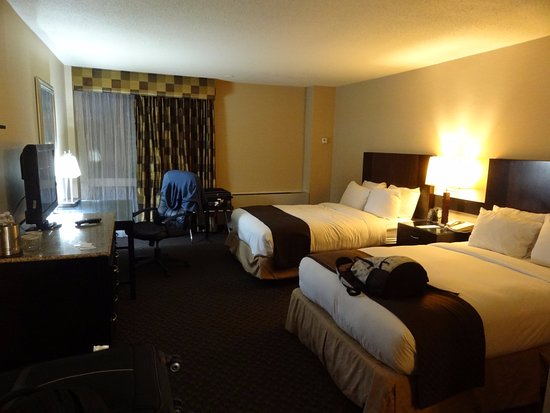 picture of radisson hotel jfk airport. Black Bedroom Furniture Sets. Home Design Ideas
