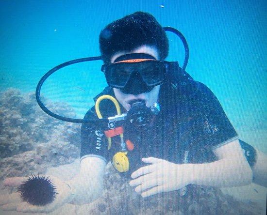 Elegance Vista Blava: Try under the sea expedition