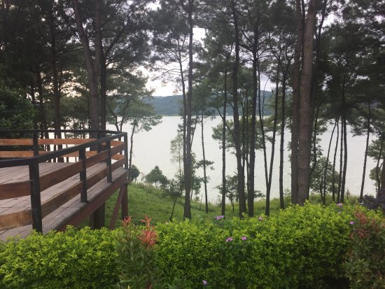 Orchid Lake Resort Image