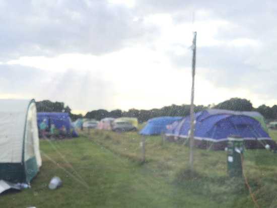 Bexhill-on-Sea, UK: View from caravan window to field behind