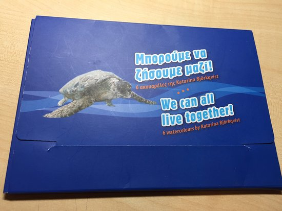 Sea Turtle Rescue Centre: photo2.jpg