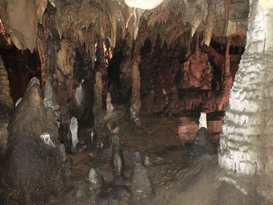 Florida Caverns State Park: photo0.jpg