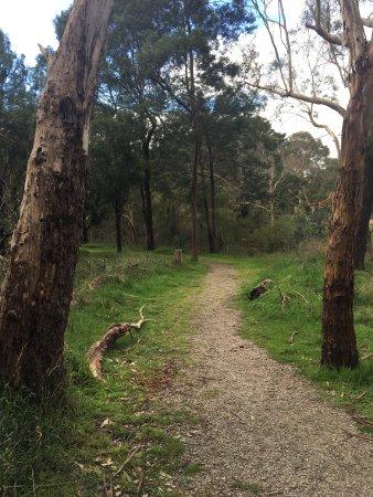 Tyabb, Αυστραλία: Olivers Creek Bushland Reserve