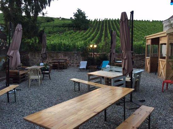 Brasserie du Vignoble: au calme sous les vignes