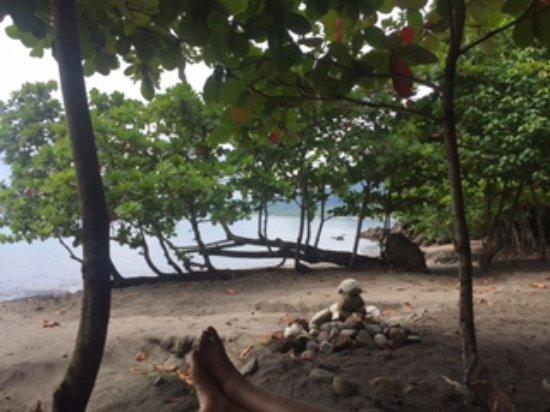 Secret Bay: Beach view