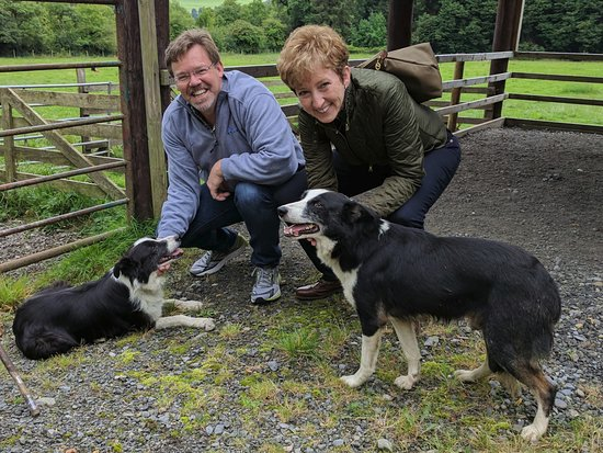 Annamoe, Irlanda: My wife and I with the dogs
