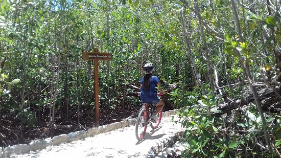 Hacienda Tres Rios: Bike Tour