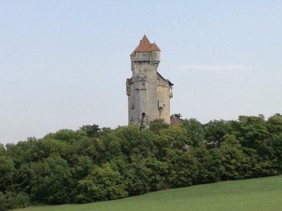 Burg Liechtenstein: Kale