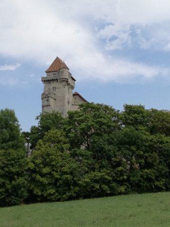 Burg Liechtenstein: Görünüm