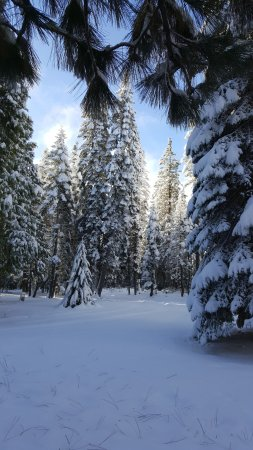 Foresthill, Kalifornia: Winter at the lodge.