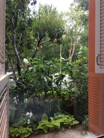 Hotel de l'ITHQ: Petit-déjeuner avec vue