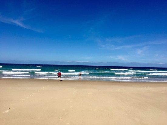 Noosa North Shore Beach Campground: photo1.jpg