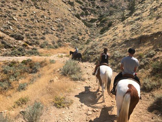 Cedar Mountain Trail Rides: photo0.jpg