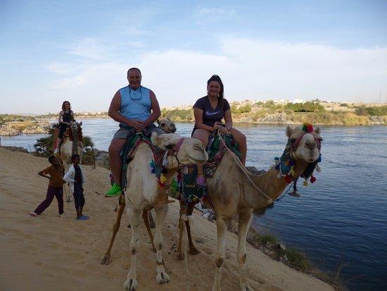 Egypt Travel Corner: EN EL PUEBLO NUBIO , CON LOS CAMELLOS MAS HERMOSOS!