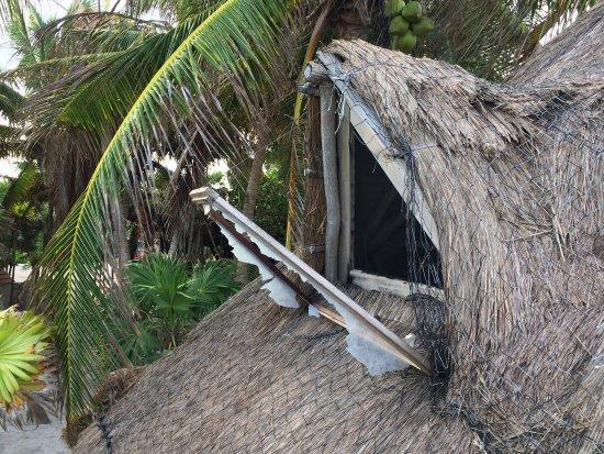 Playa Esperanza : photo0.jpg