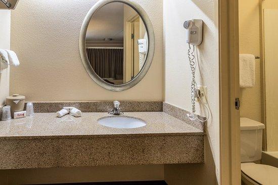 Red Roof Inn Detroit Metro Airport Belleville: Bathroom Vanity