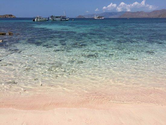 Pantai Pink: ピンクビーチの水際