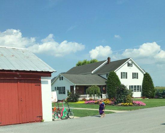 Leola, Pensilvania: photo1.jpg