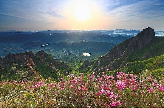 Full-Day Mount Wolchulsan National...