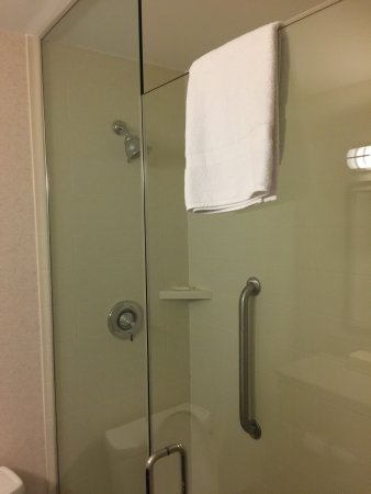 Holiday Inn Charlottesville-Monticello: photo4.jpg