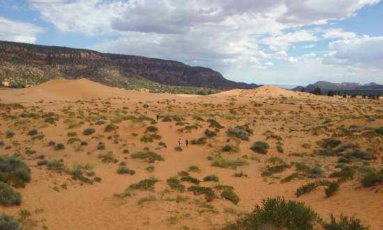 Coral Pink Sand Dunes State Park: view 2