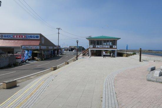 Oma-machi, Japan: 右側手前が大間崎のマグロ像