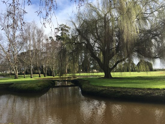 Tall Timbers Tasmania: photo1.jpg