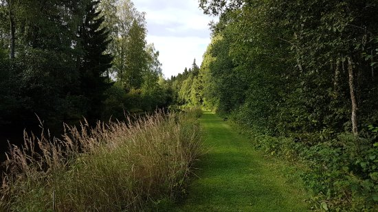 Storfors, Swedia: 20170818_170815_large.jpg