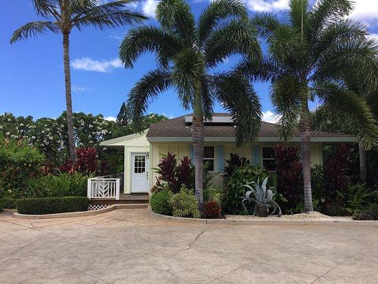 Pineapple Inn : photo0.jpg