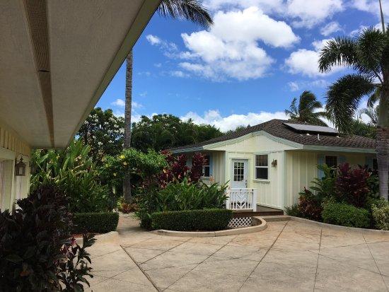 Pineapple Inn : photo1.jpg