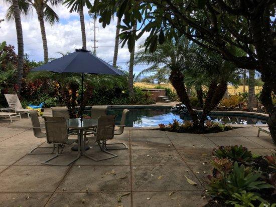 Pineapple Inn : photo3.jpg
