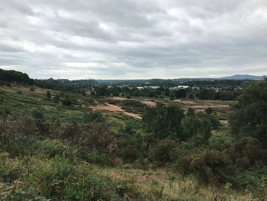 Stourport on Severn, UK: View from the top of Hartlebury Common