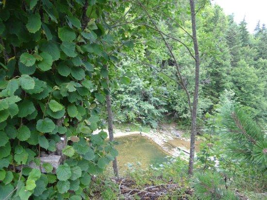 Fort-du-Plasne, Frankrike: La rivière qui longe l'hôtel