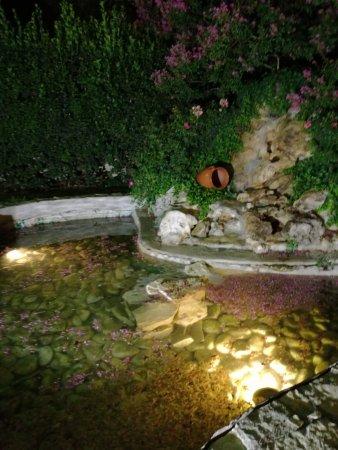 Hotel Ristorante Rossi: Una piccola cascatella nel ristorante all'aperto.