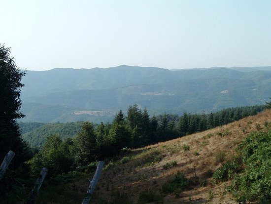 Sila Mountain 사진