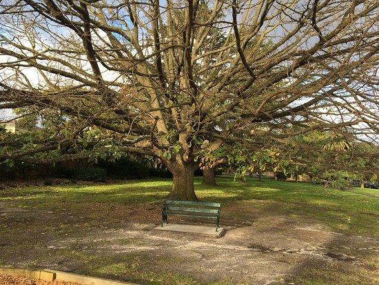 Bowen Gardens