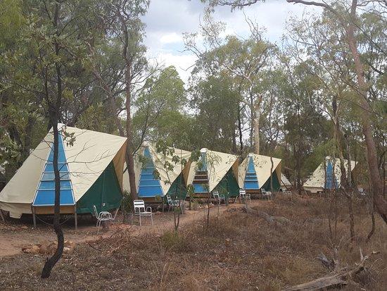 Undara Volcanic National Park, ออสเตรเลีย: Safari Tent