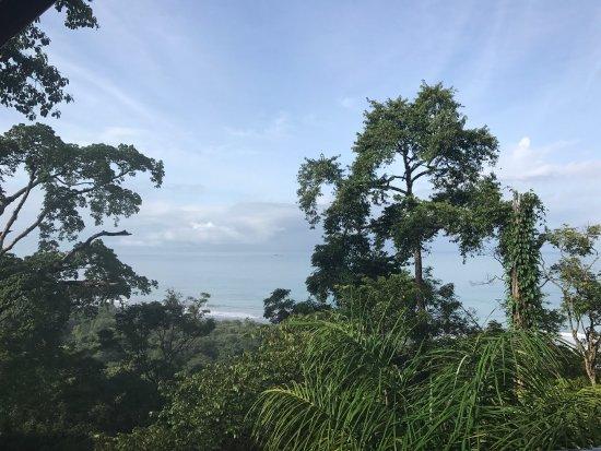 Ballena, Kostaryka: photo0.jpg