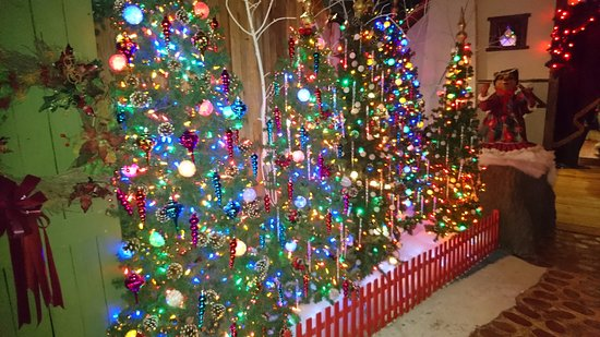 Paradise, PA: Colourful tree display