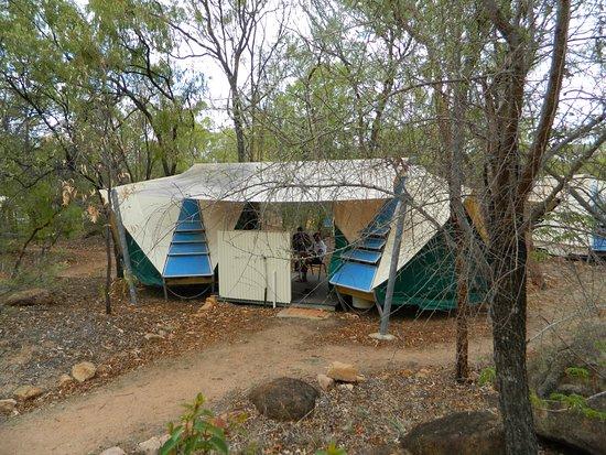 Undara Volcanic National Park, Australia: Safari tent