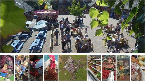 Stafford, UK: All of the attractions at Amerton Farm