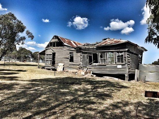 Rothbury, Australien: photo4.jpg