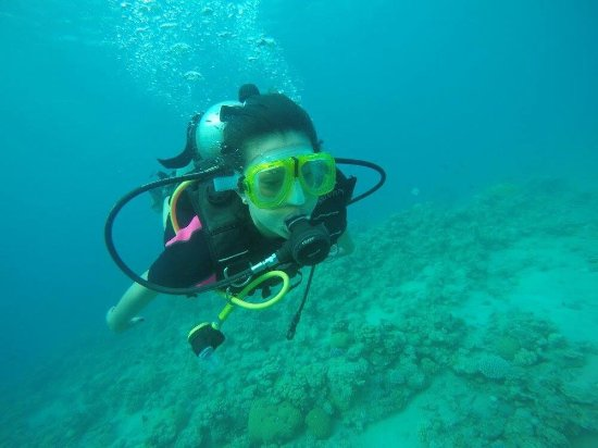 Picture of aqaba international dive center for Aqaba dive