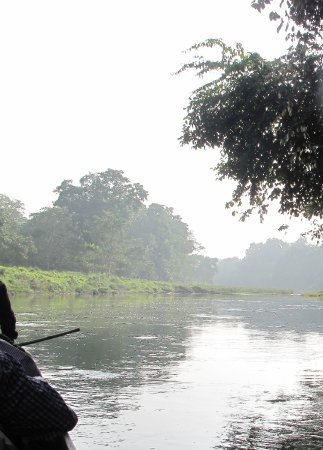 Narayani River : varmedis over floden