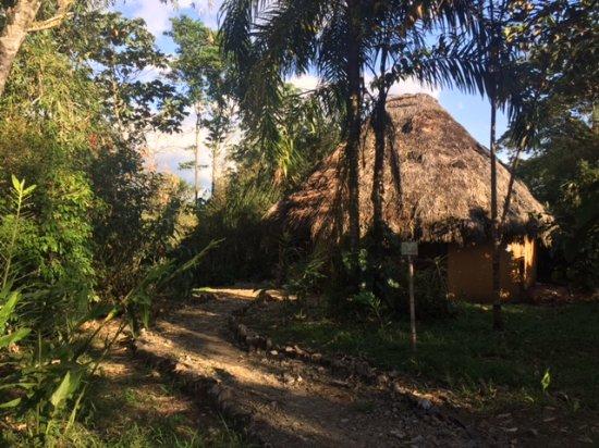 Huasquila Amazon Lodge: Chambre dans une hutte