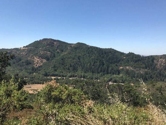 Kenwood, CA: View from the center of the Bald Mountain Trail